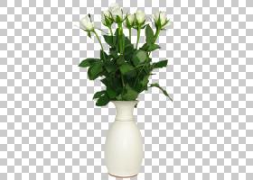 花玫瑰花瓶,在花瓶的透明白玫瑰,在白色花瓶PNG clipart的白色玫