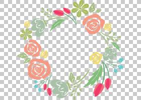 花卉摄影图形设计,花卉边框PNG剪贴画插花,叶,植物茎,水果,免版税