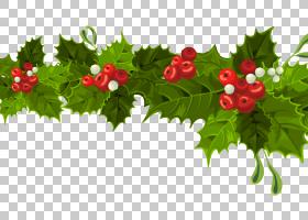 圣诞节装饰圣诞节装饰品,透明圣诞节长的槲寄生装饰,绿色和红色圣