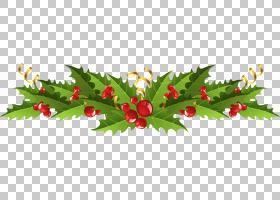 槲寄生圣诞装饰常见的冬青,透明圣诞槲寄生装饰,绿色和红色圣诞装