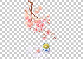 中国水彩画清明,中国古代美丽的水彩,粉红色的樱花开花树和茶PNG图片