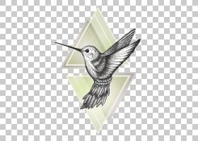 蜂鸟绘画艺术,蜂鸟PNG剪贴画海报,动物群,绘画,鸟,羽毛,纹身,图形