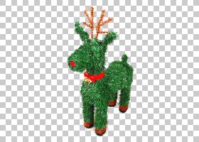 鲁道夫驯鹿麋鹿圣诞节,圣诞鹿PNG剪贴画动物,脊椎动物,草,圣诞节图片
