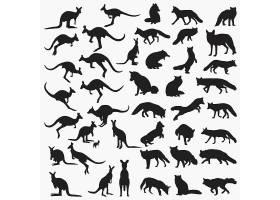 卡通动物设计