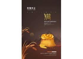 简约中国风二十四节气小满节气宣传海报