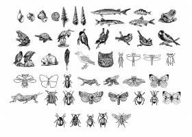 黑白动物图标