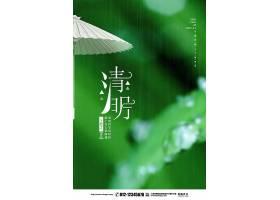绿色简约清明节宣传海报