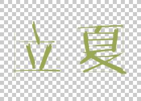 创意树叶背景立夏PNG素材