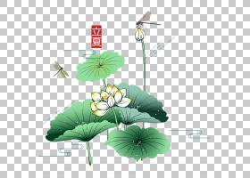 日系风时尚卡通背景立夏PNG素材