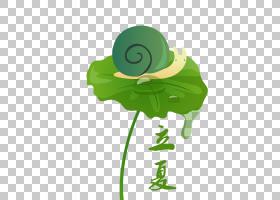 卡通荷叶蜗牛立夏PNG素材
