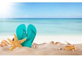 夏天拖鞋海星海滩背景图片