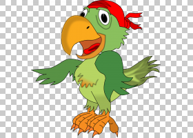 海盗鹦鹉盗版内容,鹦鹉PNG剪贴画动物,帽子,galliformes,鸡,脊椎
