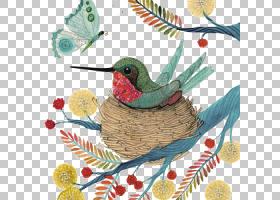 蜂鸟水彩画,鸟巢PNG剪贴画动物,动物群,插画家,卡通,爱鸟,鸟,鸟笼