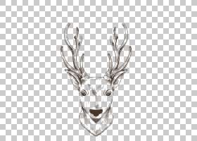 驯鹿麋鹿麋绘图,圣诞驯鹿画棕色线PNG剪贴画水彩画,鹿茸,头,抽象图片