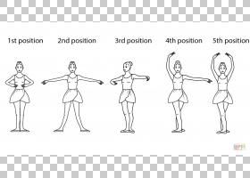脚在芭蕾舞芭蕾舞演员,芭蕾舞步骤的PNG剪贴画的位置角,哺乳动物,