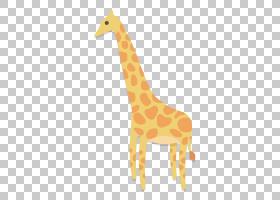 长颈鹿,可爱的长颈鹿PNG剪贴画哺乳动物,动物,橙色,生日快乐矢量