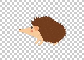 刺猬卡通,可爱的刺猬PNG剪贴画哺乳动物,动物,carnivoran,生日快