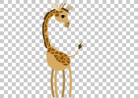 长颈鹿卡通,可爱的长颈鹿PNG剪贴画哺乳动物,动物,生日快乐矢量图