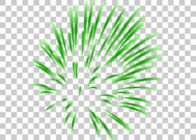 烟花,酷烟花PNG剪贴画假期,叶,对称,植物茎,草,棕榈树,卡通,酷矢