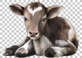 牛小牛绘图婴儿,可爱的奶牛PNG剪贴画动物,牛山羊家庭,动物群,野