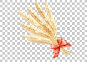 普通小麦耳麦片,小麦卡通PNG剪贴画卡通人物,食品,生日快乐矢量图