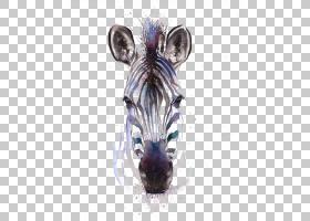 水彩画斑马版画Giclxe9e,绘图斑马PNG剪贴画哺乳动物,动物,野生动