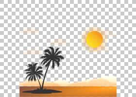 Arecaceae白色黑色,日出图PNG剪贴画橙色,计算机壁纸,生日快乐矢