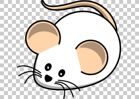 电脑鼠标鼠鼠卡通,卡通鼠标的PNG剪贴画脸部,头部,鼠标,鼻子,眼睛