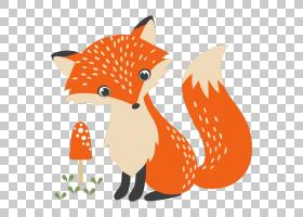 绘图,狐狸PNG剪贴画哺乳动物,动物,猫像哺乳动物,食肉动物,橙色,