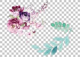 花艺设计水彩画花,水彩花叶装饰,各色花PNG剪贴画紫色,水彩叶子,