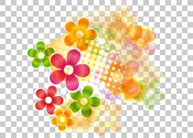 花颜色花艺设计花瓣,鲜花和花艺设计标签材料PNG剪贴画标签,花卉,
