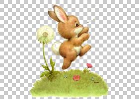 复活节兔子比利时野兔欧洲兔子,兔子和蒲公英PNG剪贴画画,手,兔子
