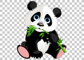 大熊猫红熊猫熊猫s,可爱熊猫卡通,熊猫卡通PNG剪贴画哺乳动物,car