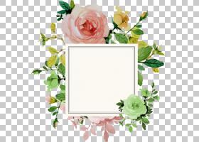 婚礼邀请花玫瑰,花边框,方形白色框架与花卉背景PNG剪贴画边框,水