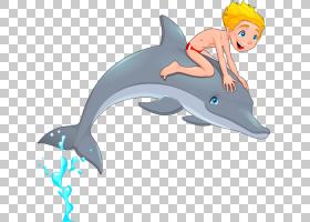 常见的宽吻海豚Tucuxi,男孩在海豚PNG剪贴画海洋哺乳动物,哺乳动