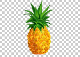 果汁菠萝股票摄影,菠萝PNG剪贴画画,食品,摄影,手,菠萝切片,水彩