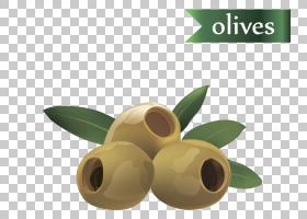 橄榄油水果橄榄叶,手,涂橄榄色PNG剪贴画水彩画,画,食品,叶,橄榄,