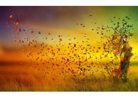 女人,艺术的,叶子,金色的,妇女,壁纸,