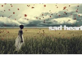 女人,情绪,妇女,悲哀的,叶子,草,壁纸,