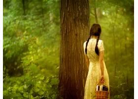 女人,情绪,森林,壁纸,
