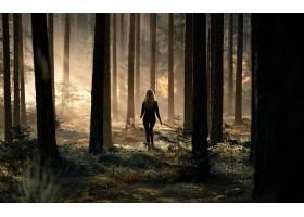 女人,情绪,森林,妇女,壁纸,