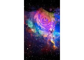 炫彩星空玫瑰H5炫彩背景图片