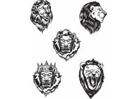 狮子黑白矢量装饰插画设计