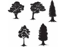 各式树的剪影矢量装饰插画设计