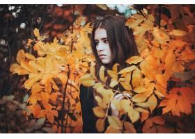 女人,模特,模特,妇女,女孩,黑发女人,棕色,眼睛,秋天,Bokeh,壁纸,