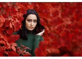 女人,模特,模特,妇女,女孩,黑发女人,秋天,叶子,蓝色,眼睛,壁纸,