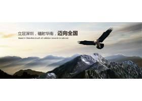 雄鹰企业标语企业文化通用海报展板