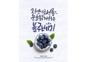 蓝莓主题蔬菜瓜果标签海报设计