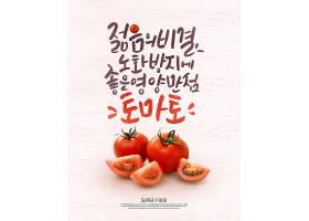 西红柿主题蔬菜瓜果标签海报设计