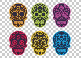 骨架,多彩多姿的头骨PNG剪贴画材料,封装的PostScript,糖头骨,头图片